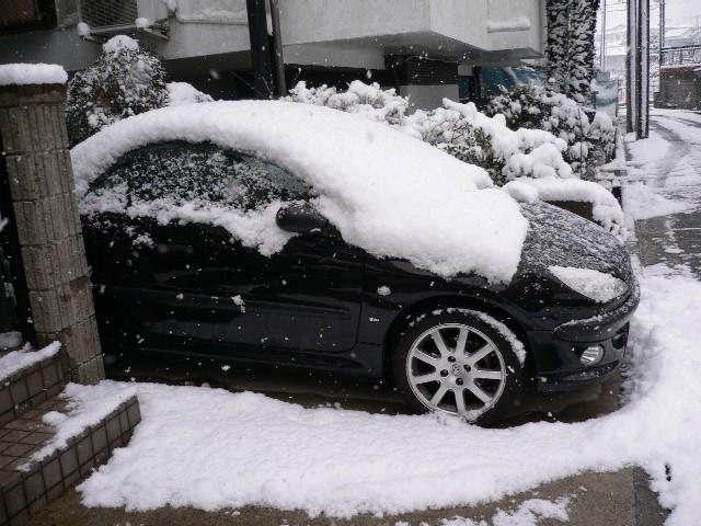 206cc_neige.jpg